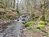 C. Hollow Combe to Confluence with Horner Water