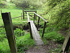 Footbridge Hazery Plantation