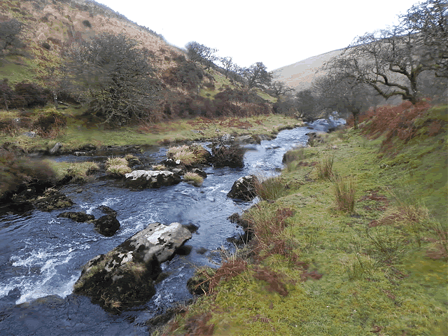 Downstream from Hoccombe Water join