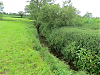 Upstream from River Parrett join
