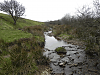 Looking upstream from Litton Ford B