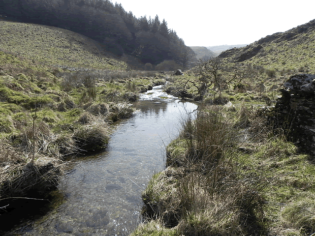 White Water flowing to join River Barle
