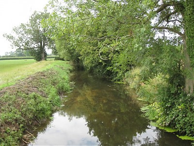 Looking Downstream From Shotts Farm Accomodation Bridge B