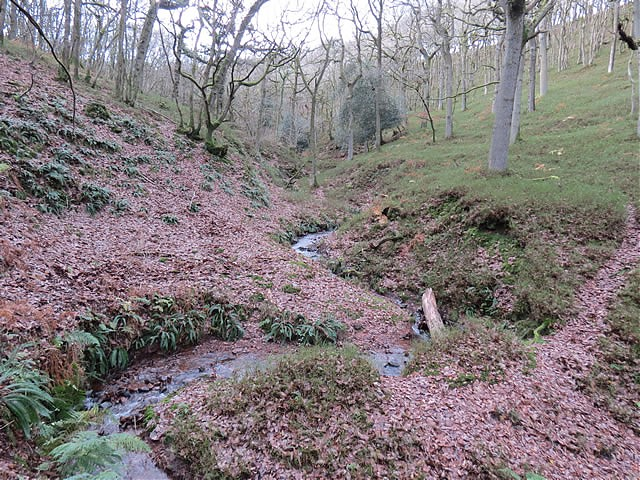 Flowing through Frog Combe