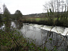 6. Beasley Mill weir and Salmon Ladder