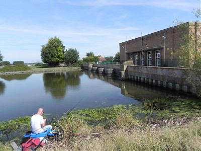 Fishing on Huntspill River