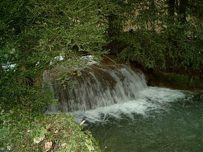 Westcombe Wood Waterfall