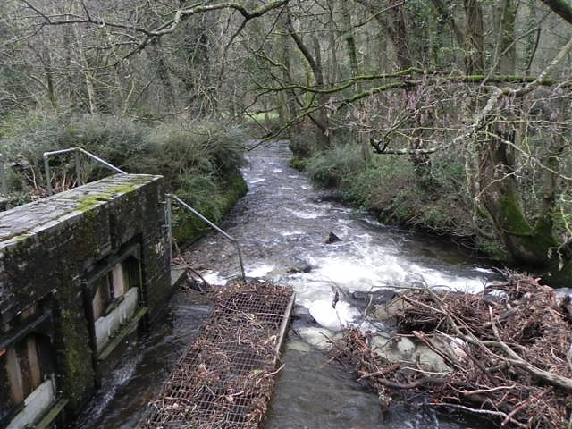 Outlet to River Barle